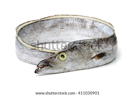 asian ribbon fish on white background
