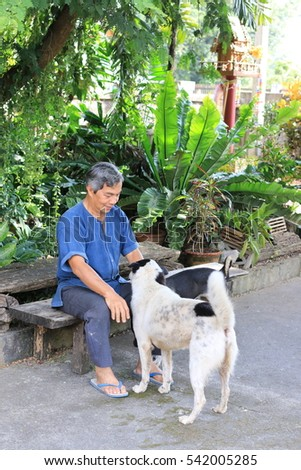 Asian senior man in kind of shirt in northern Thailand and playing with his thai dog, resting at home.