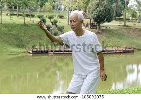 asian senior performing taichi