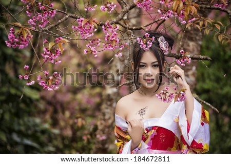 Asian sexy woman wearing traditional Japanese kimono and   Wild Himalayan Cherry Or Cherry blossom  - stock photo