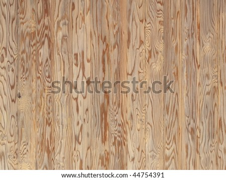 Asian spruce (tsuga) wood paneling texture with magnificent wood grain - stock photo