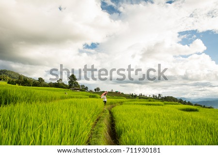 Asian woman relaxing in rice terraces on holiday
