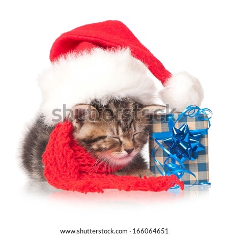 Asleep little kitten with New Year's accessories over white background