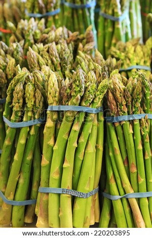 Asparagus in bunches - stock photo