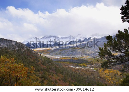 Aspens with snow covered mountains in the background in Colorado - stock photo