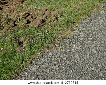 Asphalt cracked in a rural area.