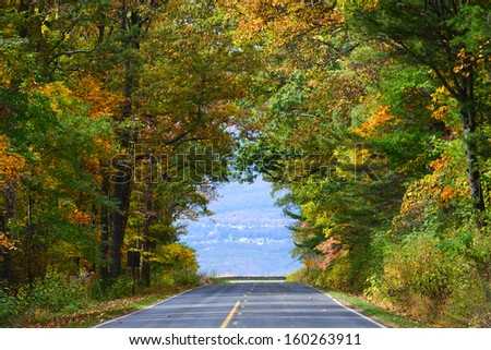 Asphalt road among autumn trees which shape a fall color tunnel - stock photo