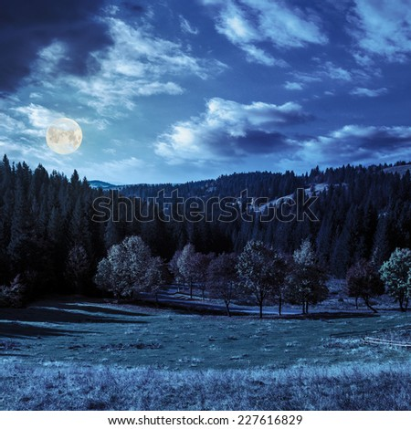 asphalt road going through green meadow with trees near autumn forest with foliage in mountains at night in full moon light - stock photo