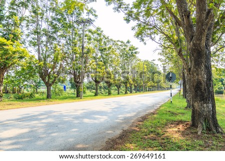 asphalt road - highway and tree lined - stock photo