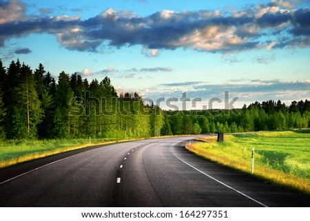 Asphalt road in forest - stock photo