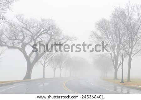 Asphalt road into fog - stock photo