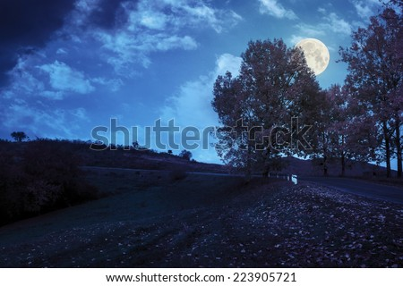 asphalt road  passes through the autumn shaded forest at night in full moon light - stock photo