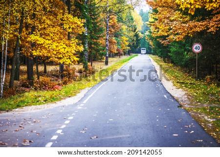 Asphalt road through autumn State Reserve. - stock photo