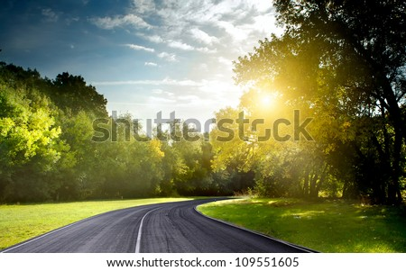 Asphalt road through the forest - stock photo