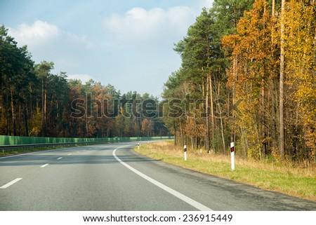 asphalt road through the forest - stock photo