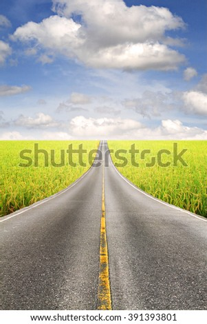 Asphalt road through the rice field and clouds on blue sky in summer day.