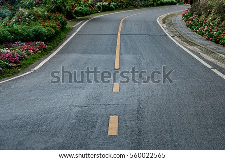 Asphalt road with colorful flowers in the park