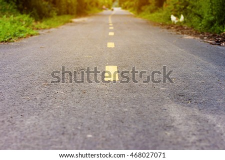 Asphalt road with path, Roadside tree, Sunlight. Selective focus and Soft focus.