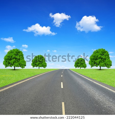 Asphalted road with trees