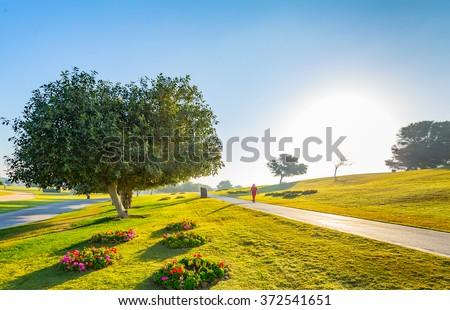 Aspire Park in Doha city, the capital of Qatar - stock photo