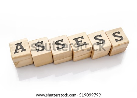 ASSESS word made with building blocks isolated on white