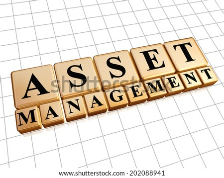 asset management - text in 3d golden cubes with black letters, business financial operation concept - stock photo