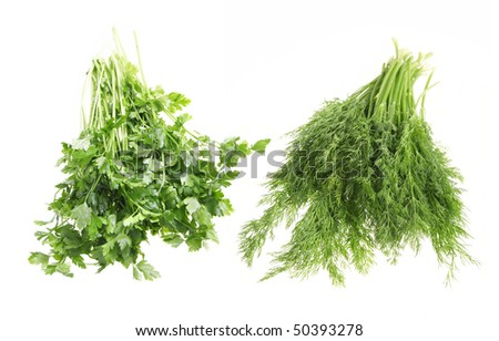 assorted bunch of dill and parsley on white background - stock photo