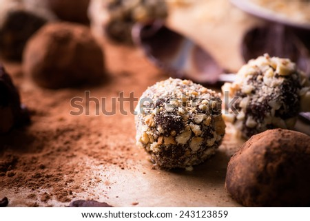 Assorted dark chocolate truffles with cocoa powder, biscuit and chopped hazelnuts over baking paper, selective focus, close up - stock photo