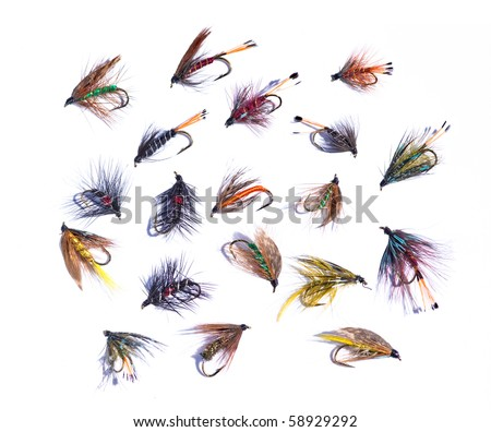 assorted fishing flies on a white background - stock photo