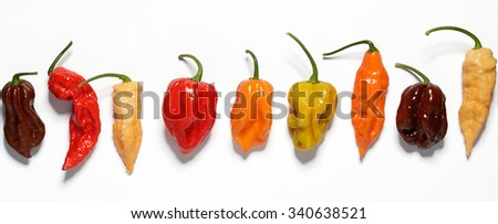Assorted fresh organic peppers - stock photo