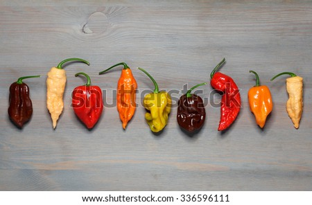 Assorted fresh organic red chili peppers, habanero,colorful red and yellow sweet peppers and jalapeno - stock photo