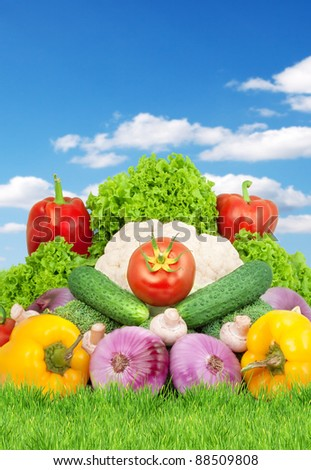 Assorted fresh vegetables isolated on blue background - stock photo