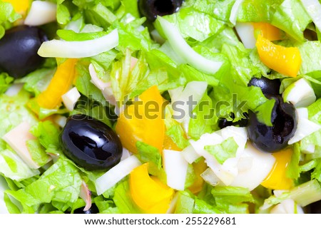 Assorted green leaf lettuce with squid and black olives. Close up - stock photo
