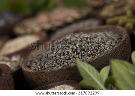 Assorted natural medical, herbs and mortar