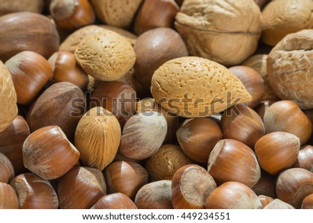 Assorted nuts in shells. Close up macro. Natural foods, vegan supplement, healthy fat source. Almonds, walnuts, hazelnuts - stock photo