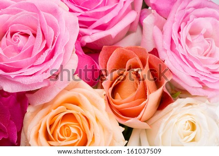 Assorted roses of pink, yellow, orange, and creamy colors - stock photo