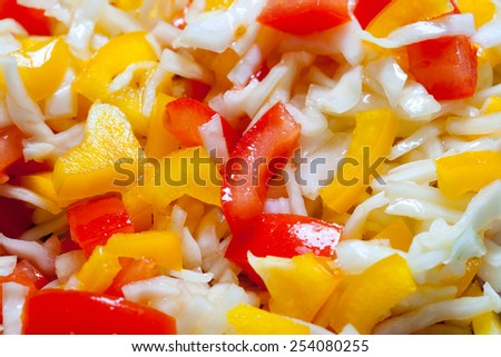 Assorted salad with bell peppers, cabbage and tomatoes - stock photo