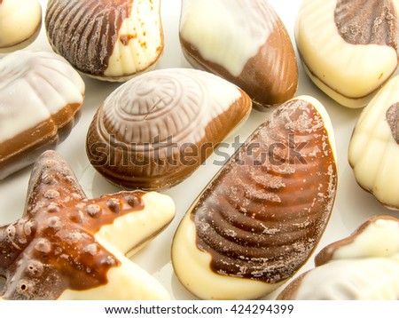 assorted sea creatures chocolate shapes - stock photo