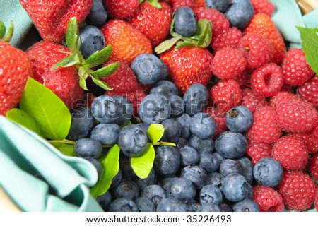 Assorted seasonal berries including blueberry, strawberry and raspberry