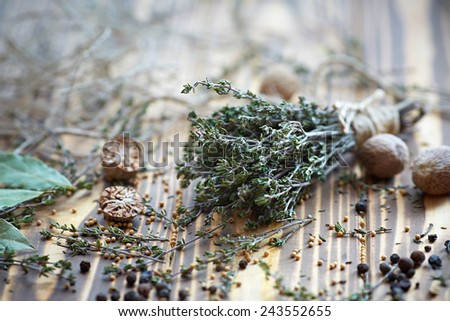 Assorted spices and fresh thyme - stock photo