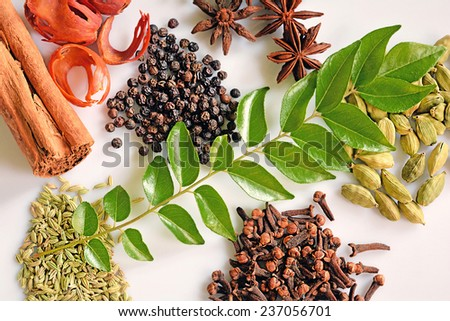 Assorted Spices of Kerala. Cinnamon, pepper, clove, star anise, cumin, cardamom, nutmeg and curry leaves form integral ingredients of Malayalee cuisine. They add to the appetizing flavor of curries. - stock photo