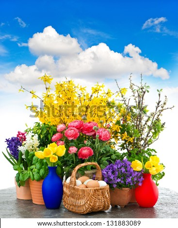 assorted spring flowers and easter eggs decoration over cloudy blue sky. tulips, ranunculus, campanula, forsythia - stock photo