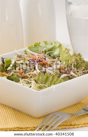 Assorted sprouts salad in a white square bowl. Selective focus.