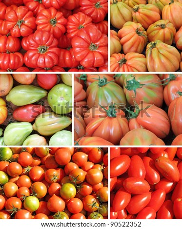 assorted tomato collage, images from mediterranean farmers market - stock photo