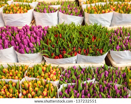 Assortment of bouquets of colorful tulips in a flower shop - stock photo