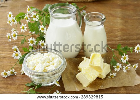 assortment of dairy products (milk, butter, sour cream, yogurt) rustic still life