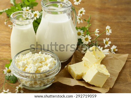 assortment of dairy products (milk, butter, sour cream, yogurt) rustic still life - stock photo