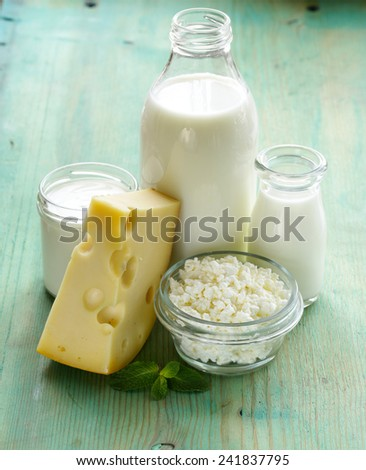 assortment of dairy products (milk, cheese, sour cream, yogurt) - stock photo