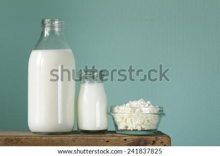 assortment of dairy products (milk, cheese, sour cream, yogurt) - stock photo