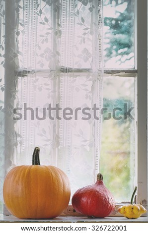 Assortment of different edible and decorative pumpkins on rustic window sill. Natural day light with retro filter effect - stock photo